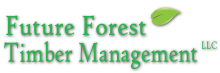 Future Forest Timber Management